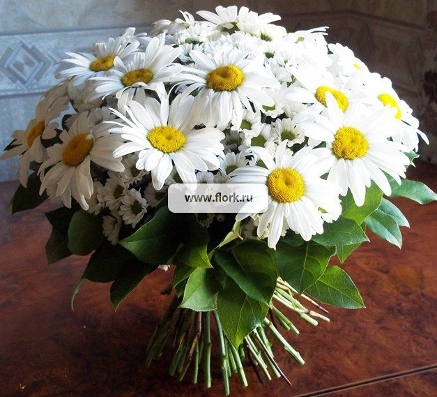 Цветы ромашки цена за штуку москва