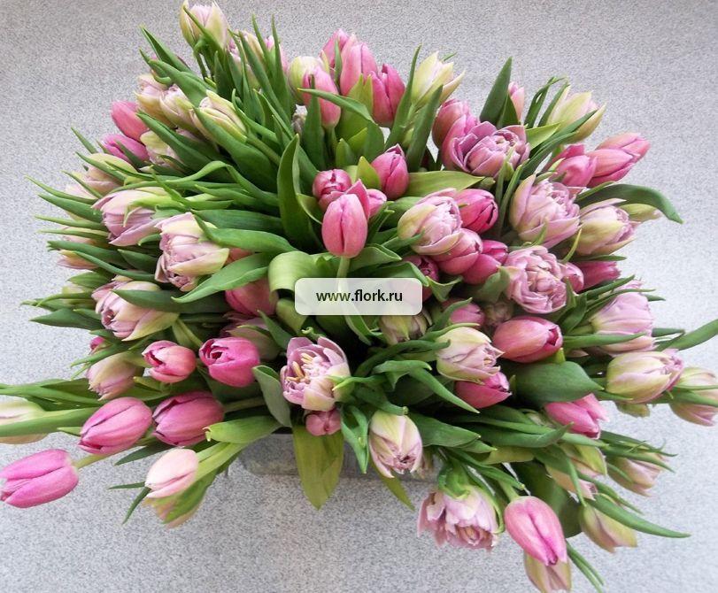 Какие тюльпаны купить на 8 марта?