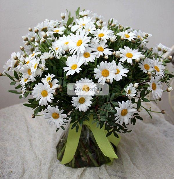 Свадебный, живые цветы ромашки купить чебоксары