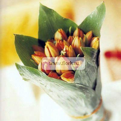 Цветочный аукцион FLORA HOLLAND