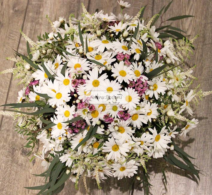 Садовые цветы, комнатные растения, флористика, садоводство