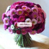 Фото букет цветов астры